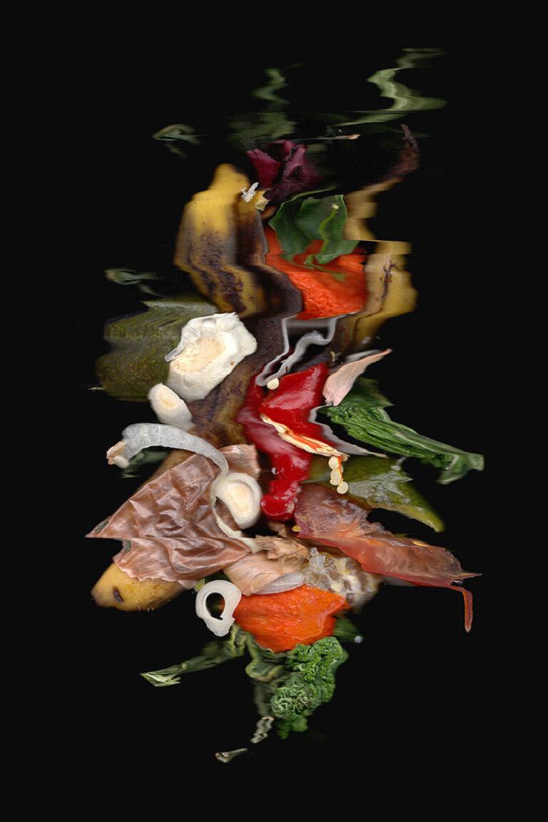 scanfoto von früchten und gemüse
